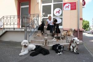 Hundesalon Offenburg