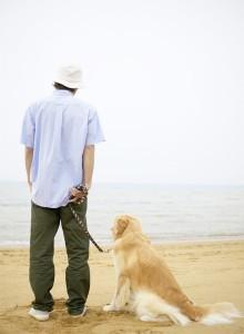 Urlaub - Hund