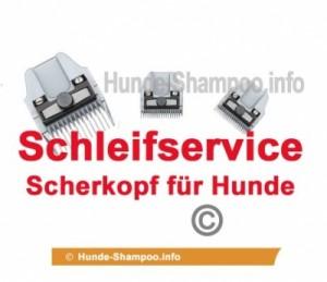 Schleifen Service